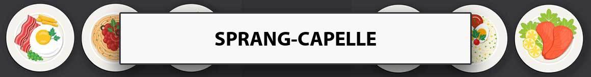 maaltijdservice-sprang-capelle